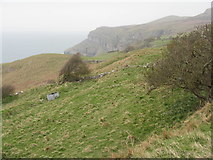 SH7783 : Coastal cliffs and grassland by M J Richardson