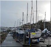 SX9256 : Brixham Sailing Club by N Chadwick