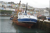 SX9256 : BM225, Brixham Harbour by N Chadwick