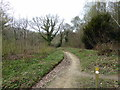 TQ7413 : 1066 Walk at Fore Woods NAture Reserve by PAUL FARMER