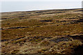 SD5947 : Peat Moor Landscape looking towards Holme House Fell by Chris Heaton