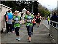 H4572 : Omagh Half Marathon and Fun Run - 255 by Kenneth  Allen