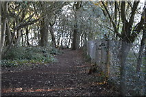 SX9371 : South West Coast Path, The Ness by N Chadwick