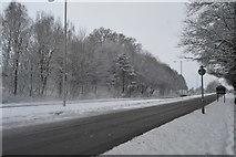 TQ5844 : Snowscene, A26 by N Chadwick