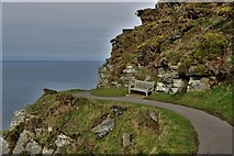 SS7049 : Valley of the Rocks: South west coastal path by Michael Garlick