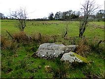 H5371 : Boulders, Bancran by Kenneth  Allen