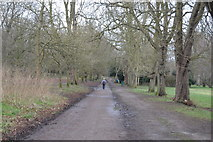 TQ2263 : London Loop, Nonsuch Park by N Chadwick