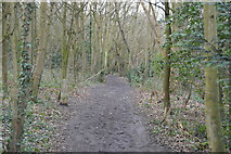 TQ2262 : London Loop, Nonsuch Park by N Chadwick