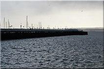SX9163 : Princess Pier by N Chadwick