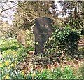 TG2108 : The grave of Ellen (Nell) and George J Kemp by Evelyn Simak