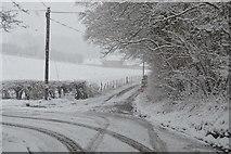 TQ5944 : Track to Mabledon Farm by N Chadwick