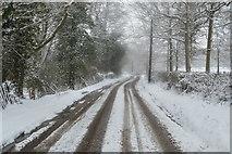 TQ5843 : Vauxhall Lane by N Chadwick