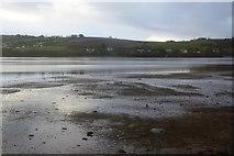SX9172 : Teign estuary by N Chadwick