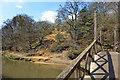 SU9948 : Footbridge and Sandy Bank by Des Blenkinsopp