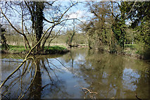SU9947 : River Wey at Shalford by Des Blenkinsopp