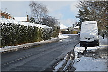 TQ5841 : Powdermill Lane by N Chadwick