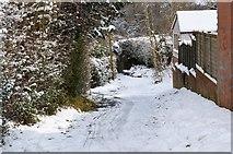 TQ5840 : Footpath off Newlands Rd by N Chadwick
