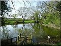 SK2032 : Heath Top Pond by Ian Calderwood