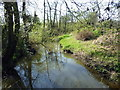 TQ1829 : River Arun by PAUL FARMER