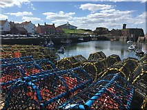 NT6779 : Hundreds of Creels at Dunbar Harbour by Jennifer Petrie