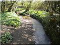 SK4651 : Bagthorpe Brook east of Westwood by Richard Vince
