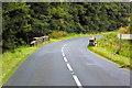 D1936 : Bridge over Carey River in Ballypatrick Forest by David Dixon