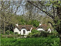 TQ2979 : Duck Island Cottage, St James's Park by Neil Theasby