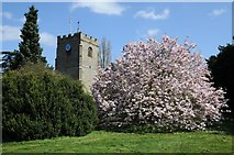 SP2760 : The tower of Barford church by Philip Halling