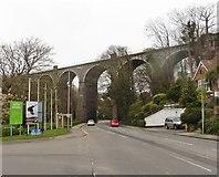 SW8161 : Railway viaduct above Edgcumbe Avenue by Roger Cornfoot