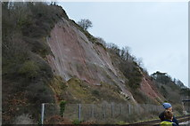 SX9573 : Cliff protection by the railway by N Chadwick