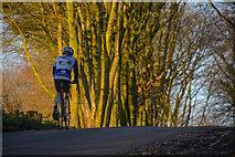 ST1105 : East Devon : Stafford Hill by Lewis Clarke