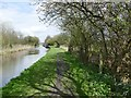 SK1918 : The Trent & Mersey Canal at Barton Turns by Graham Hogg
