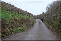 SX8057 : Lane to Totnes by N Chadwick