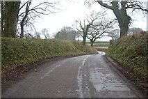 SX8058 : A Devon lane by N Chadwick