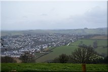 SX8159 : View over Totnes by N Chadwick