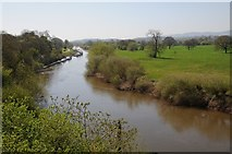 SO8551 : The River Severn viewed from the Carrington Bridge by Philip Halling