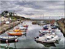 D2818 : Carnlough Harbour by David Dixon
