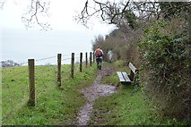 SX9575 : Bench by South West Coast Path by N Chadwick