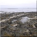 HY7045 : Intertidal, off Whitemill Point by Richard Webb