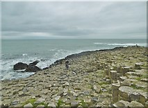 C9444 : Aird, Giant's Causeway 3) by Mike Faherty