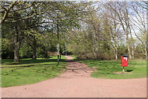 NS3421 : Path at Craigie Estate by Billy McCrorie