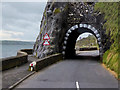 D3905 : The Black Arch on the A2 Coast Road by David Dixon