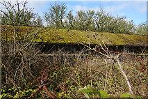SE1220 : Derelict farm buildings on Moor Hey Lane by Ian S