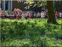 TQ4077 : London Marathon - a shady spot by Stephen Craven