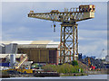 NS5366 : Barclay Curle Titan Crane by Thomas Nugent