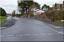 SX9676 : Coronation Avenue by N Chadwick