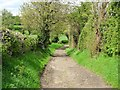 SK5326 : Bridleway down Mill Hill to West Leake by Ian Calderwood
