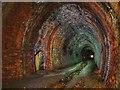 NU1011 : Hillhead Tunnel by Mark Hatton