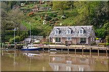 SX4268 : Calstock : Danescombe Quay by Lewis Clarke