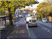 J3674 : Holywood Road, Belfast by David Dixon